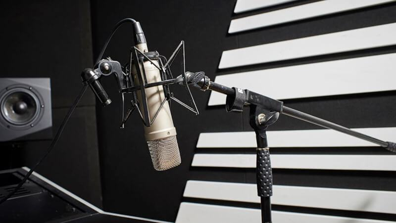 Best Microphone For Vocals 2021