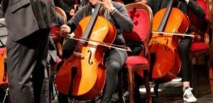 Cello Vs Bass