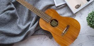 Best Baritone Ukulele 2020 Top Brands Review