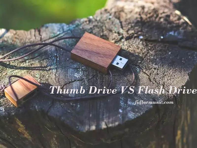 Thumb Drive VS Flash Drive 2021 Best Reviews